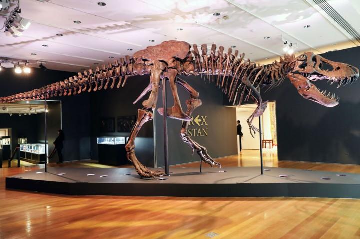 Pelelangan Kerangka Tyrannosaurus Rex